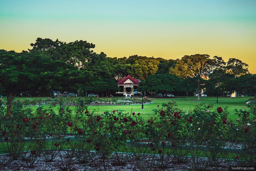 DSC_1094_new_farm_park