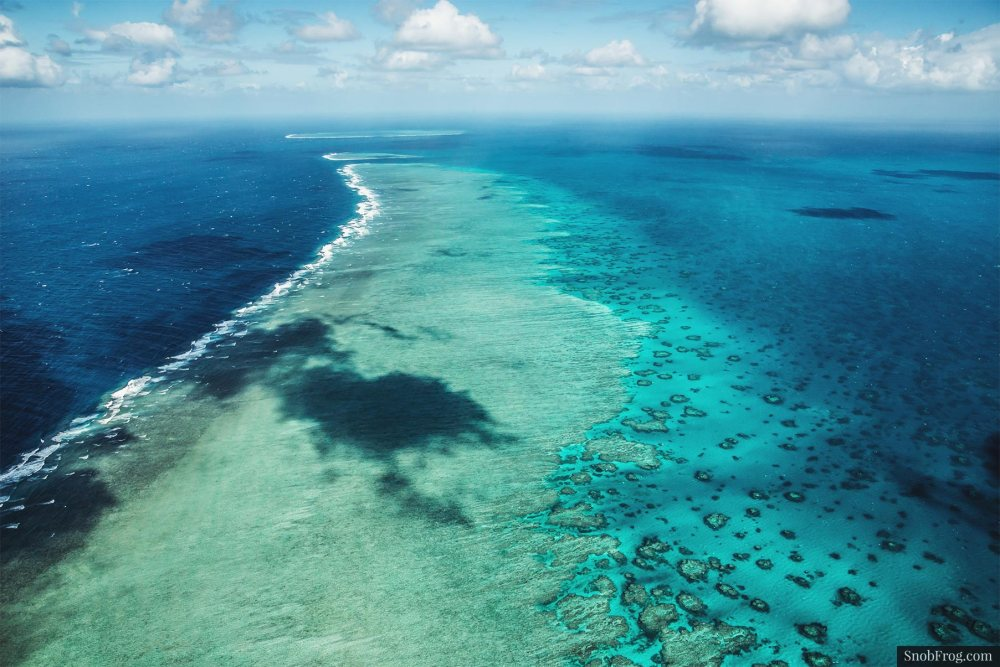 DSC_2496_great_barrier_reef