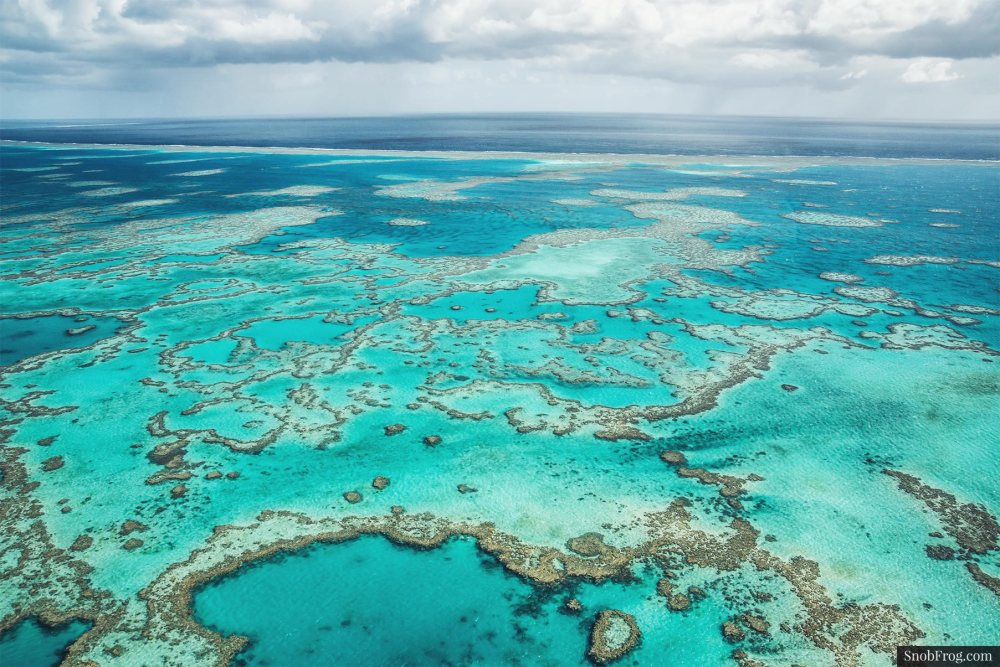 DSC_2505_great_barrier_reef