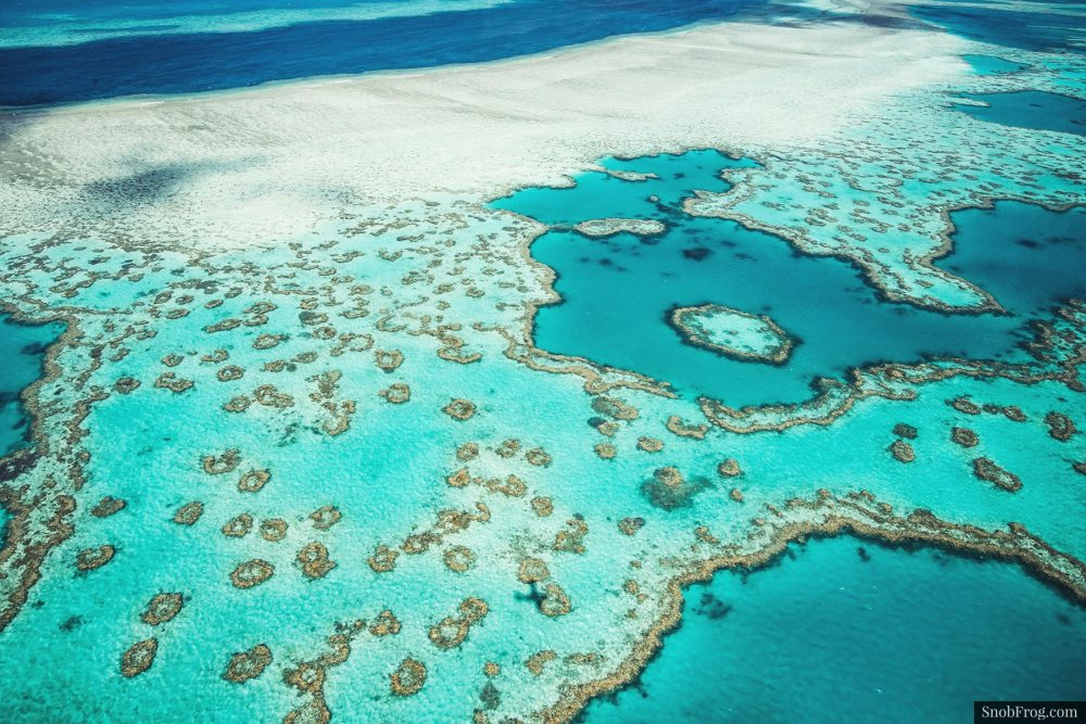 DSC_2512_great_barrier_reef