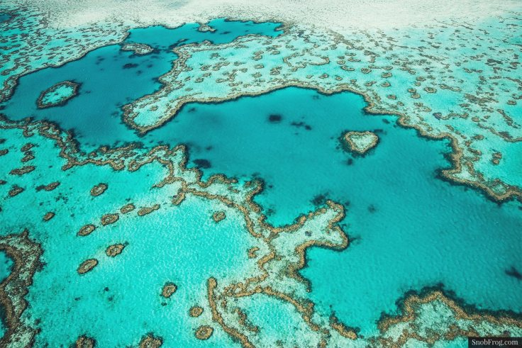 DSC_2515_great_barrier_reef