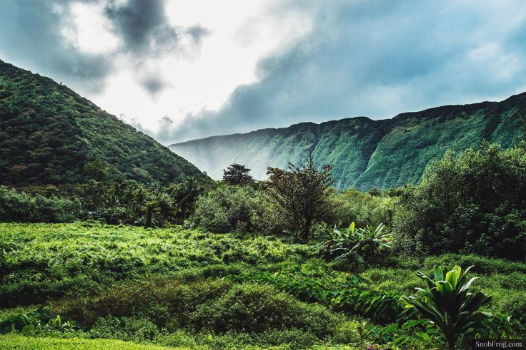 DSC_3140_waipio_valley
