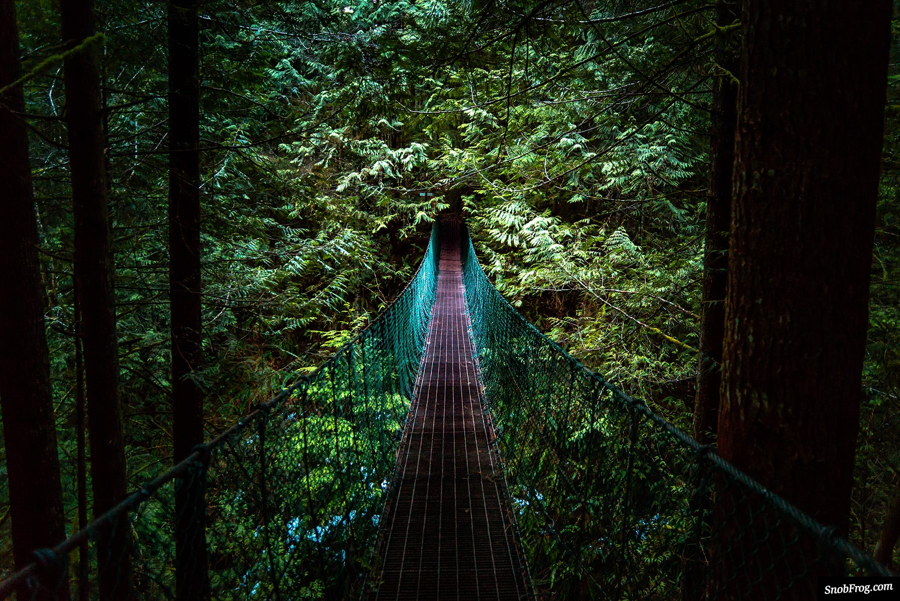 DSC_3773_suspension_bridge_to_mystic_beach_juan_de_fuca_trail
