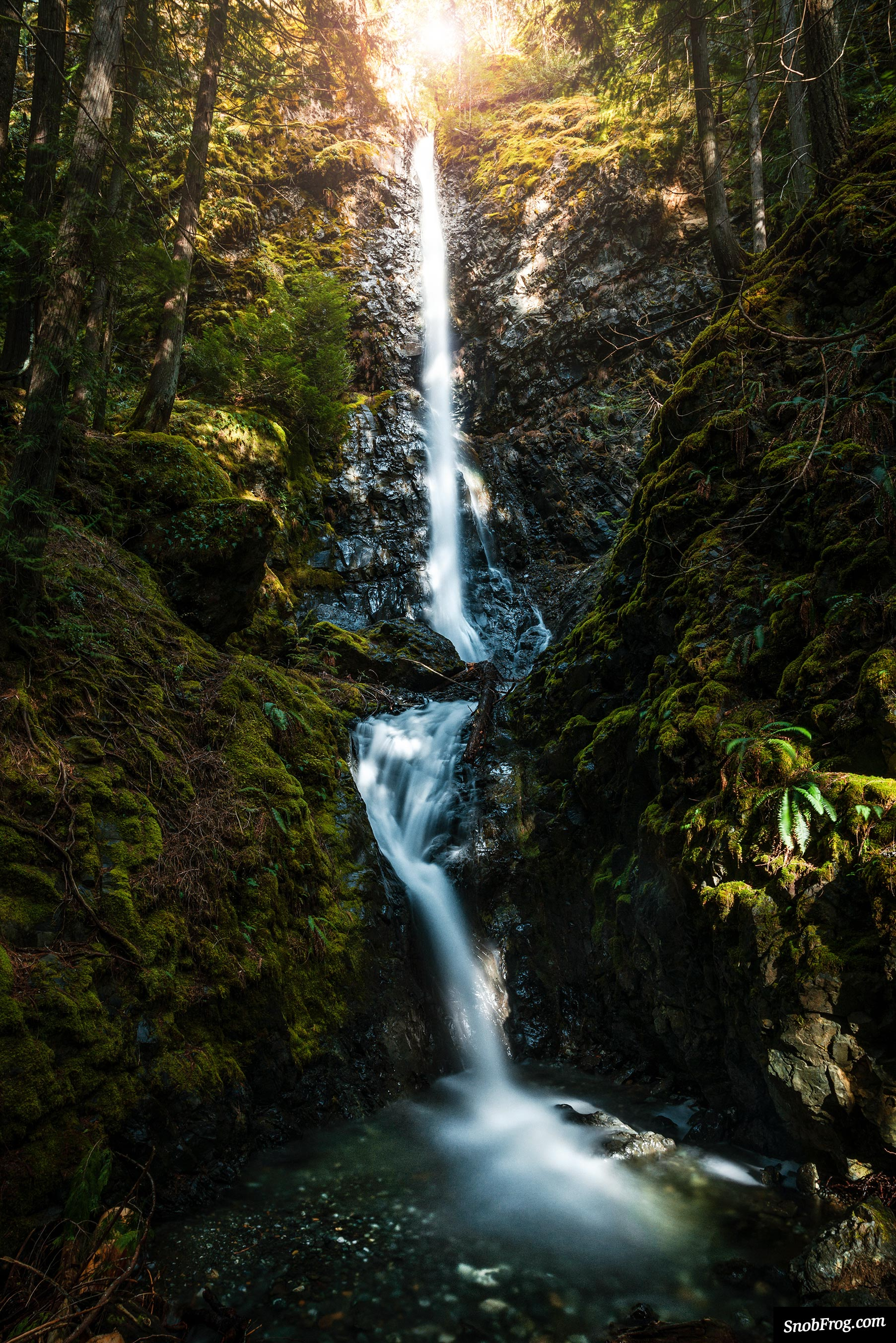 DSC_4127_lupin_falls_strathcona_provincial_park